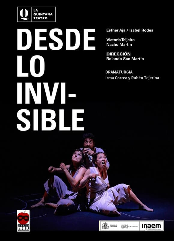 Cartel de Desde lo invisible